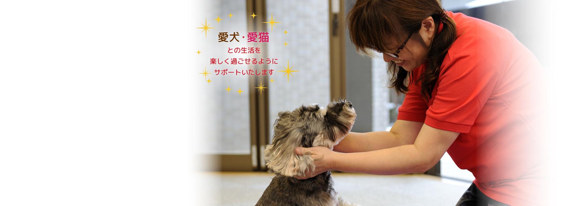 ペットケア・りんりん 新潟ペット介護・新潟ペットシッター